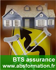bts bts assurance formation par correspondance. Black Bedroom Furniture Sets. Home Design Ideas